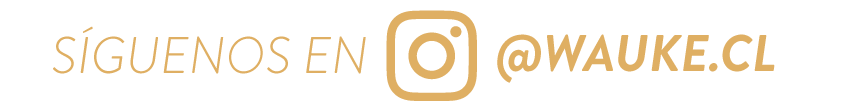 Wauke Banner Instagram