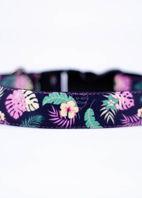Collar Floralias Buscamos Casita