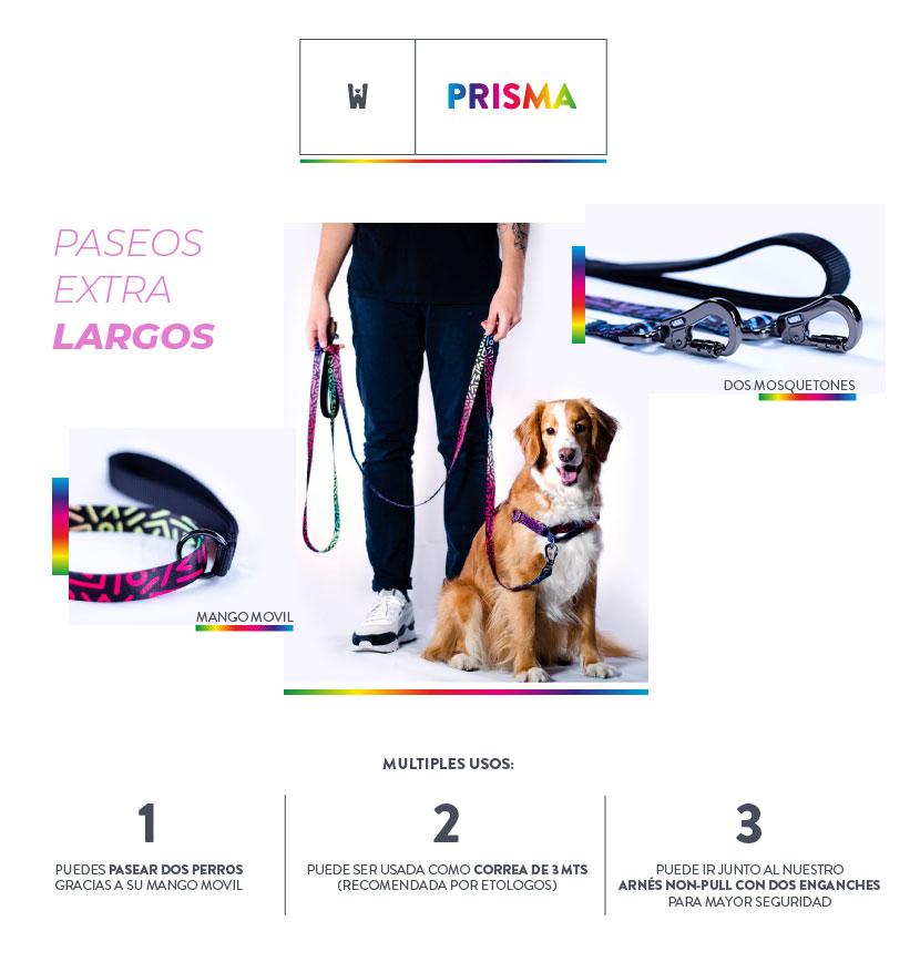 Pack Pro Prisma