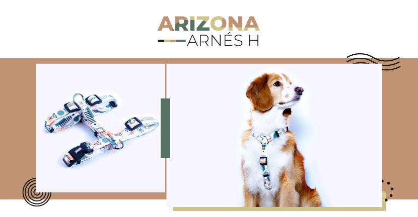 Ficha Arnes Arizona