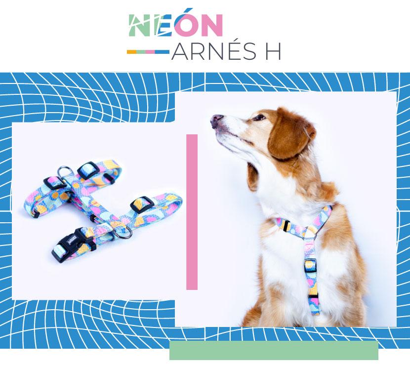 Ficha Arnes Neon Wauke