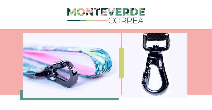 Ficha Correa Monteverde